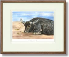 Wally the Water Buffalo - Wood Framed Leaflet Pic